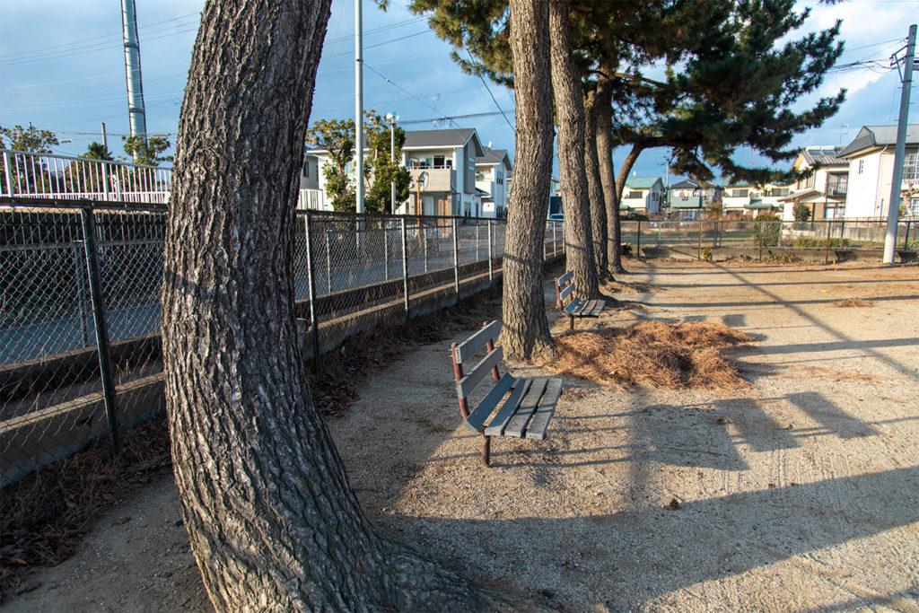 藤塚公園10
